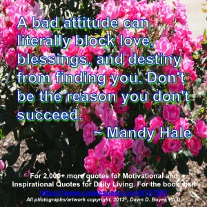 Strive for a Better Attitude